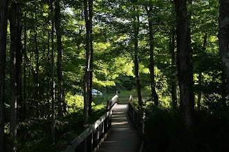 Photo: A trail though the woods leads to a viewing platform with a majestic view of this large harbor and nearby Grand Island.