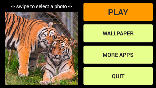 Tigers LWP + Jigsaw Puzzle