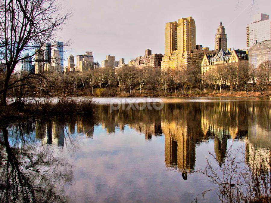 Central Park by Fabio Ferraro - City,  Street & Park  City Parks ( park, manhattan, new york, central park, ny )