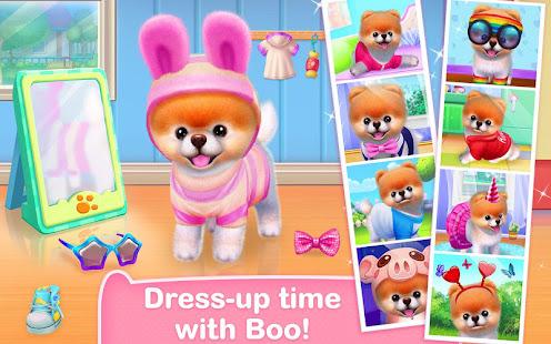 Boo – The World's Cutest Dog 6