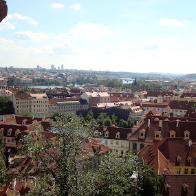 Prague Roofs by Yury Tomashevich - City,  Street & Park  Neighborhoods ( roof, cityscapes, green, roofs, brown, prague, city,  )