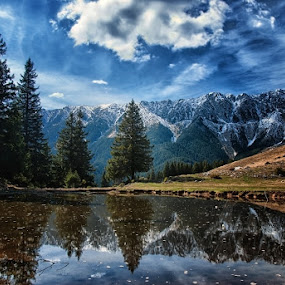 by Veronica Gafton - Landscapes Mountains & Hills ( blue, white, fir )