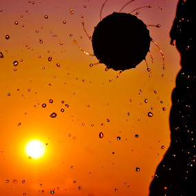 Water Splash II by Amartya SKk - Abstract Water Drops & Splashes ( water, ball, drops, spin, sun )