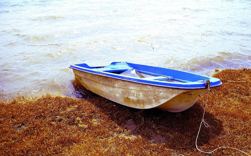 Solo una barca per tentare la fuga di Daniele75