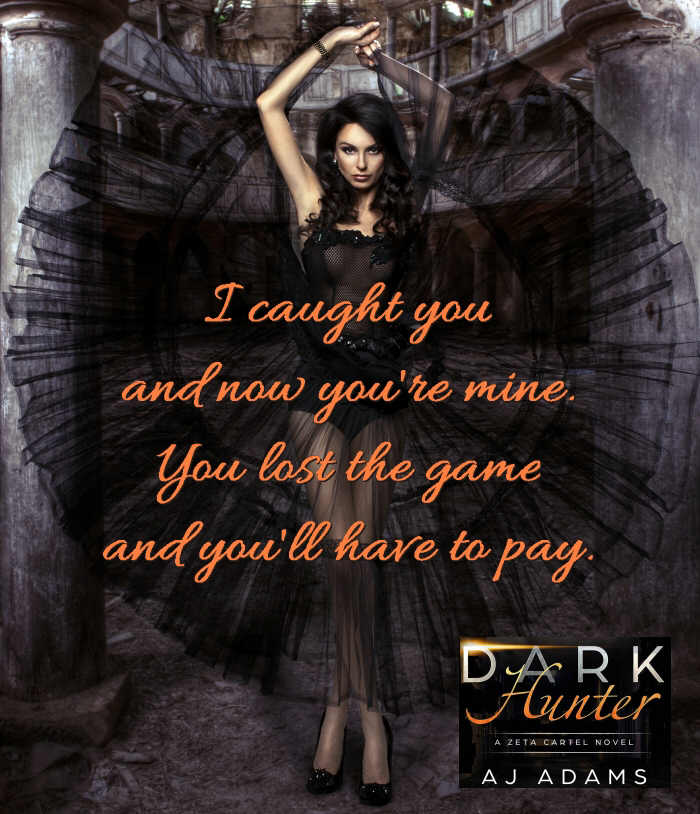 Dark Hunter by AJ Adams teaser 11 all orange text.jpg