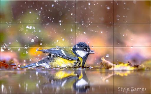 Sparrows Puzzle  screenshots 3