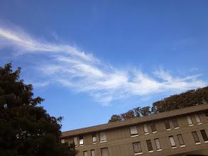 Photo: フェニックス(2013/10/30 ICU-ERB)