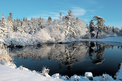 Reflections by Tom Whitney - Landscapes Weather ( pwcfoulweather-dq, water, reflection, winter, horizontal, snow, trees, garyfonglandscapes, holiday photo contest, photocontest,  )