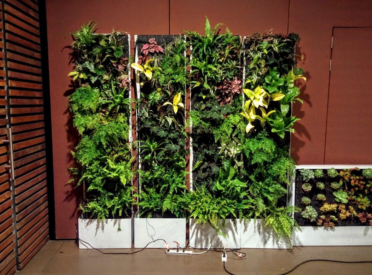 Curso de jardines verticales y cubiertas vegetales en Jardines verticales baratos