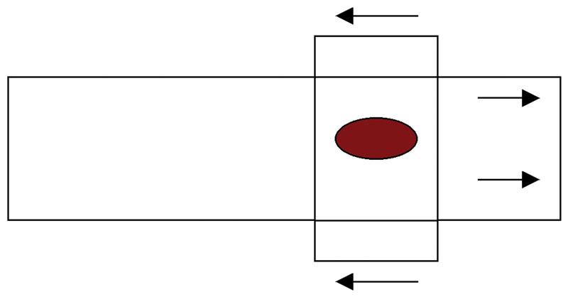 The coverslip-to-slide technique