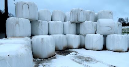 Photo: Des boules pour faire des bonhommes de neige ?