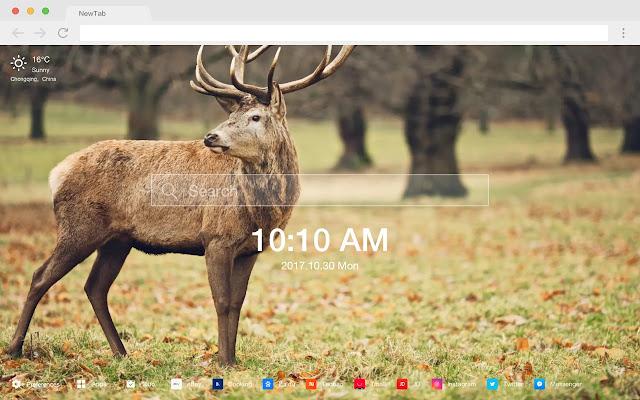 Deer HD Wallpapers Featured Animals Topics