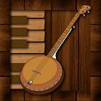 Professional Banjo