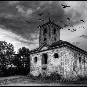 Abandoned by Jana Vondráčková - Black & White Buildings & Architecture