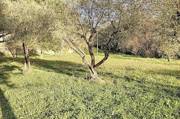 terrain à Grasse (06)