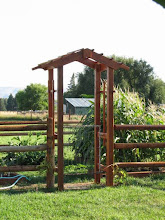 Photo: Garden arbors for my sister. The gate was made by my dad nearly 50 years ago...