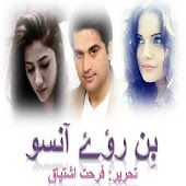 Bin Roye Ansoo urdu novel