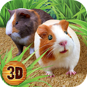 Guinea Pig Simulator: House Pet Survival