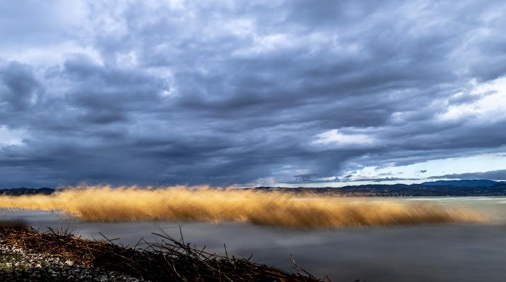 .. Wind in my Lake .. di enricosottocorna