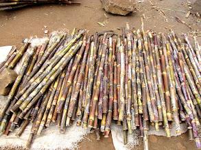 Photo: Lilongwe - market, sugar cane