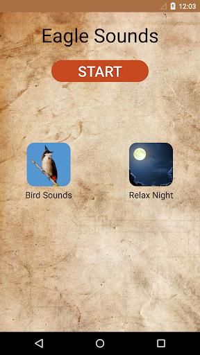 Eagle Sounds and Ringtone