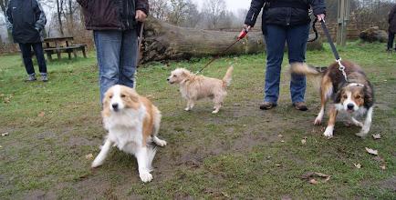 Photo: Kyna, Max en Gorky
