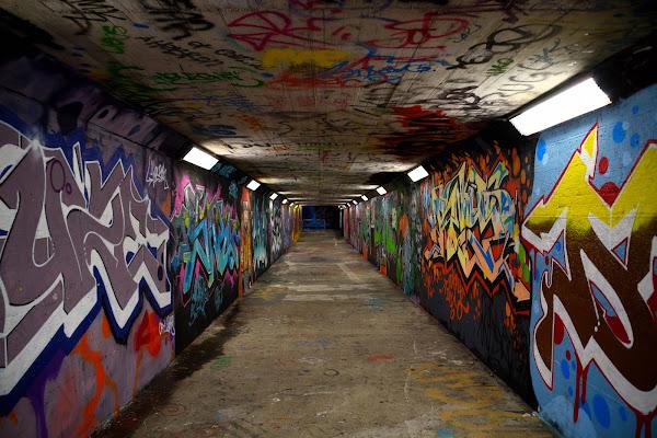 Immersione nella street art di dadoo
