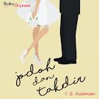 Novel Cinta Jodoh dan Takdir icon