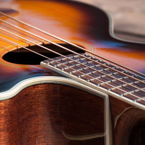 Lazy Guitar by Eva Ryan - Artistic Objects Musical Instruments ( orange, music, strings, guitar )