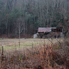 Old Barn by Karen Harris - Buildings & Architecture Decaying & Abandoned ( field, farm, old, barn, landscape, country, abandoned )