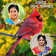 Download Birds Dual Photo Frames For PC Windows and Mac
