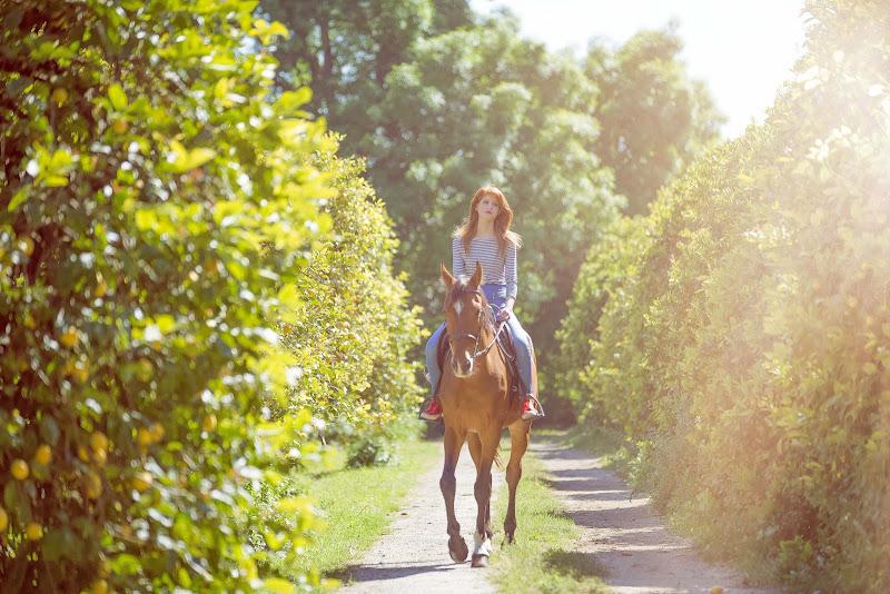 my horse di simona cancelli