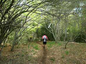 Photo: magníficos senderos para correr
