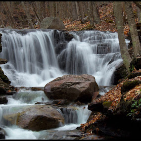 The Falls-1 by William Hamm - Uncategorized All Uncategorized ( william hamm,  )