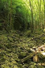 Photo: A Telekes-völgy vadregényes sziklavilágában