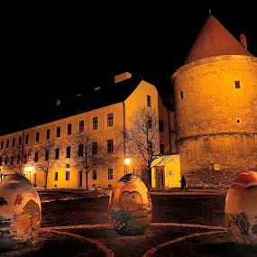 Easter eggs.. by Zvonimir Cuvalo - Public Holidays Easter ( eggs, easter, painted, night, cathedral, zagreb )