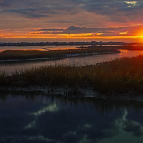 Murrell's Inlet Sunrise by Jonathan Wheeler - Landscapes Sunsets & Sunrises ( tidal creeks, sc coast, sc lowcountry, salt marsh, sunrise, murrell's inlet )