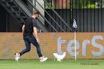 ? ? Duel in Eredivisie stilgelegd na protest en... een kip op het veld