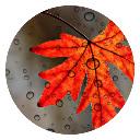 Autumn New Tabs HD Hot Scenery Theme