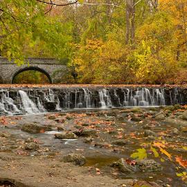 Autumn Bridge by John Berry - Landscapes Waterscapes
