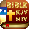 Holy Bible (KJV, NIV) Pro icon