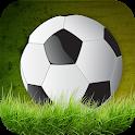 Soccer Championship 3D icon