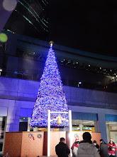 Photo: 街はもうクリスマス 汐留日テレ