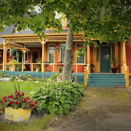 Come and Sit Awhile by Lena Arkell - Buildings & Architecture Homes ( orange, flowers, green, porch, house,  )