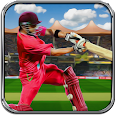World Cricket t20 War