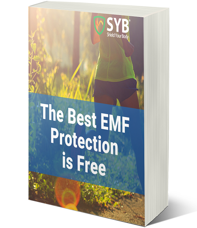 Get Your Free Guide Now