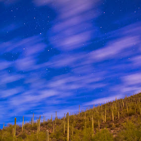 Blue Night Sky by Karl Cummings - Landscapes Starscapes