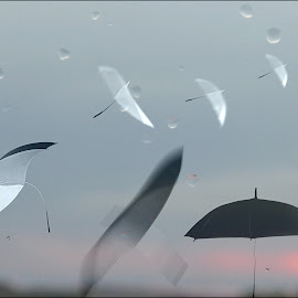 Improvisation on Autumn Theme by Zenonas Meškauskas - Digital Art Abstract ( umbrella, sunrise, birds, rain, droplets )