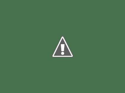 ASAMBLEA ESCUELA MONTESSORI