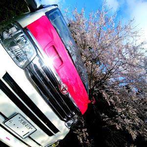 ハイエースバン TRH200Vのカスタム事例画像 シュナ 🐾🐶🐾CT2期生さんの2020年04月15日05:40の投稿